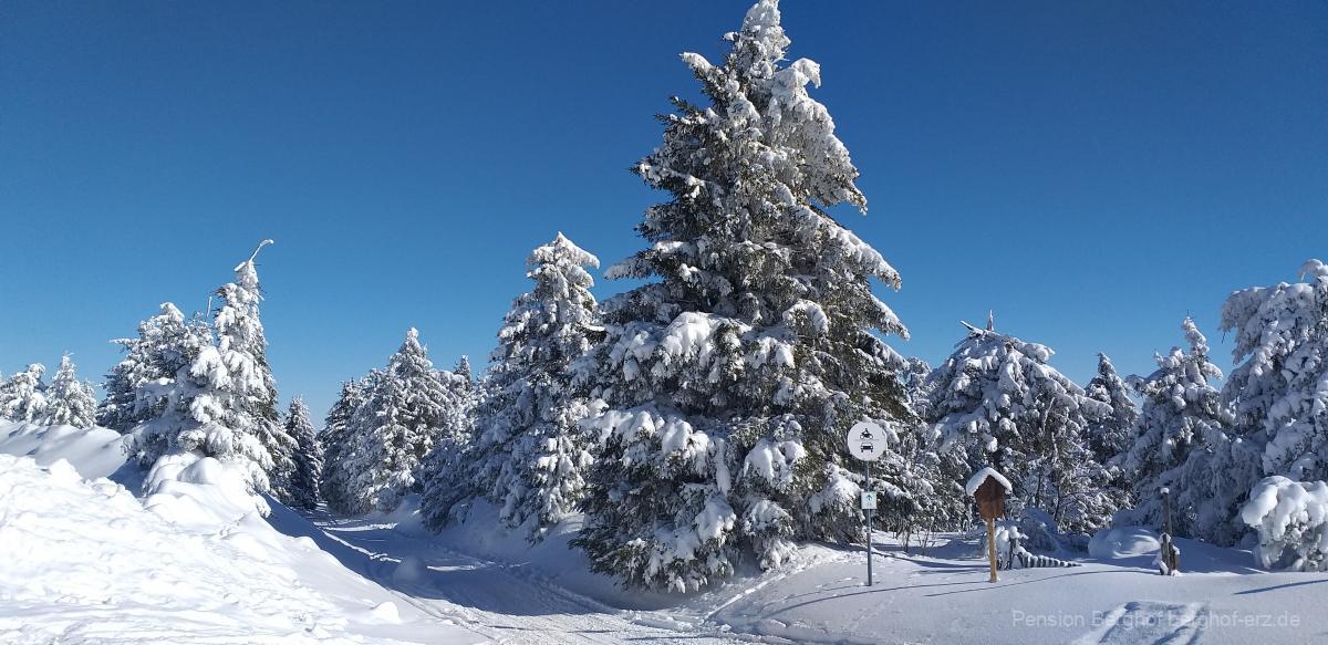 Wintersportmöglichkeit in der Umgebung der Pension